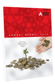 Thumbnail - Annual Report 2013